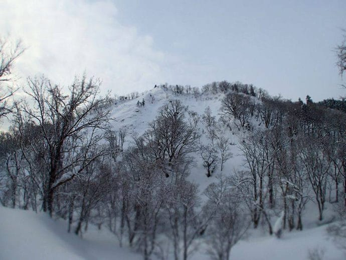 北海道バックカントリースキー