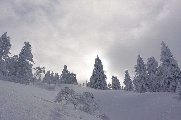 八甲田山荘からの山便り