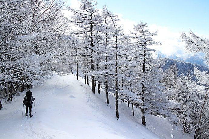 下山途中の山景色