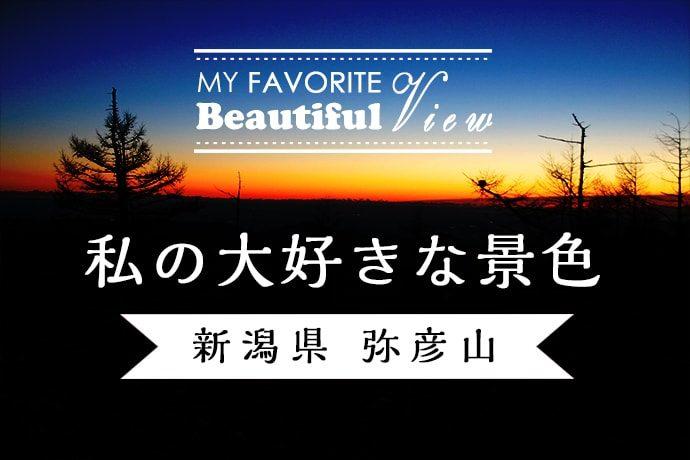 新潟県 弥彦山