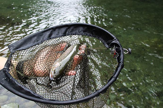 釣り場で1匹目の魚