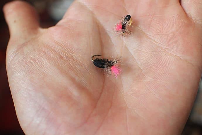 アリに模したフライ