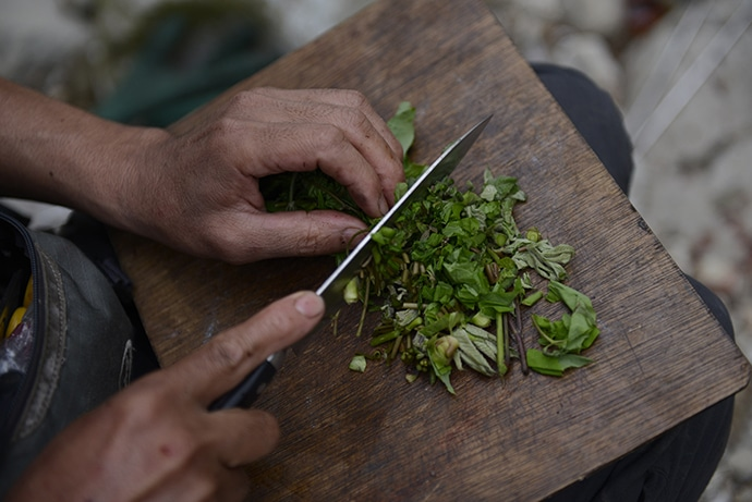 木屋と山菜1