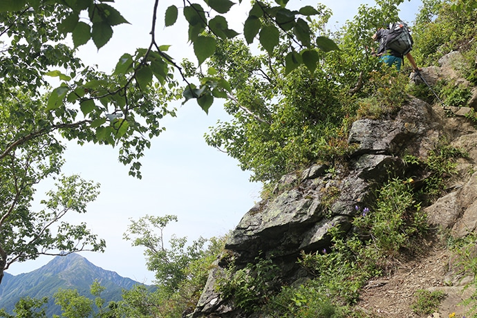 広河原峠までの登山道