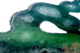 大島玲子写真展『四季のうつろい』