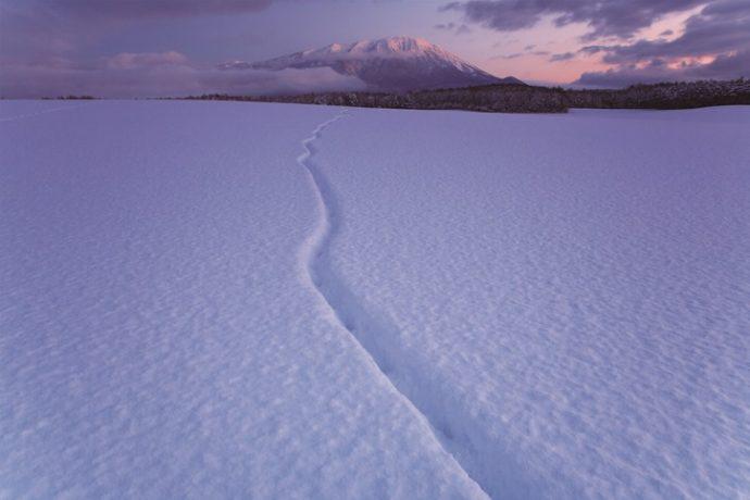 試練から立ち上がる力を与えてくれた大自然 蒲澤利行写真展「イーハトーブの旅」
