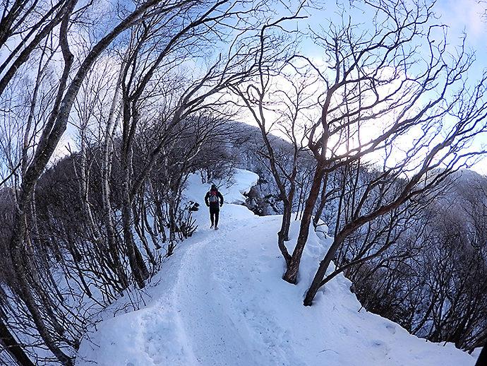黒檜山山頂へと続くトレイル