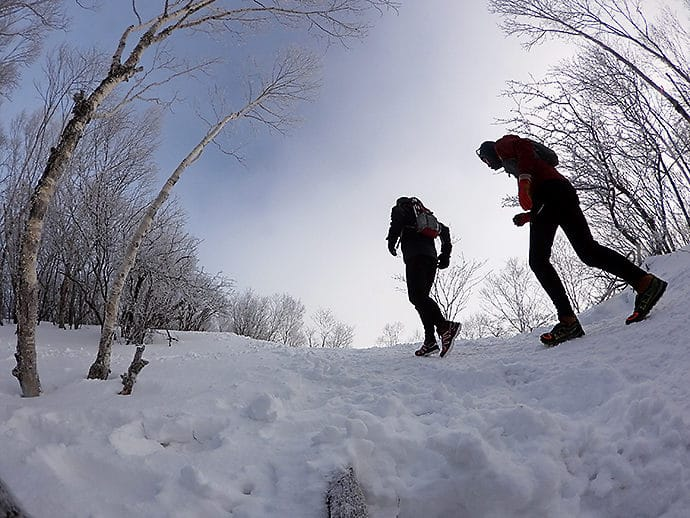 黒檜山の神秘的なトレイル