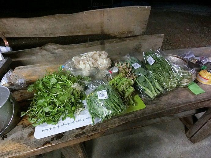奥多摩の山菜類