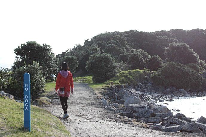 ニュージーランドのモチュリキ島