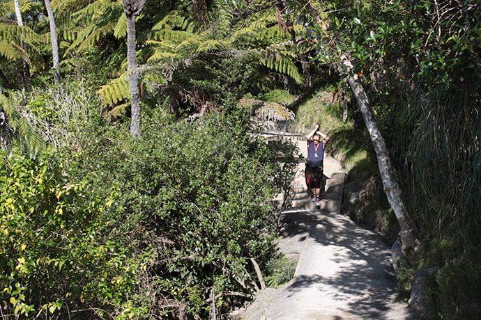 タウランガ「ザ・マウント」のトレイル