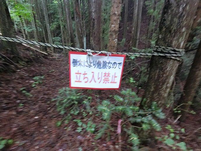 倒木により危険なので立ち入り禁