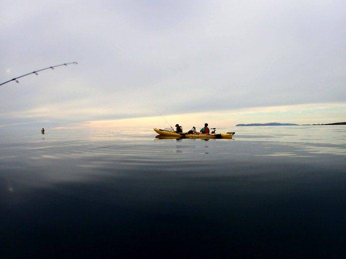 利尻島 釣り