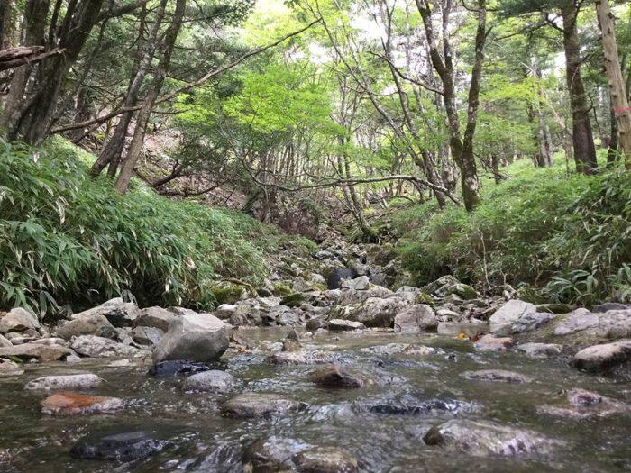 吉野山の川