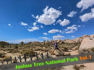 ジョシュアツリー国立公園