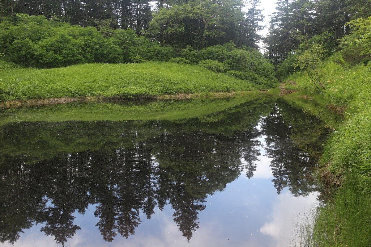 蝶ヶ岳の池