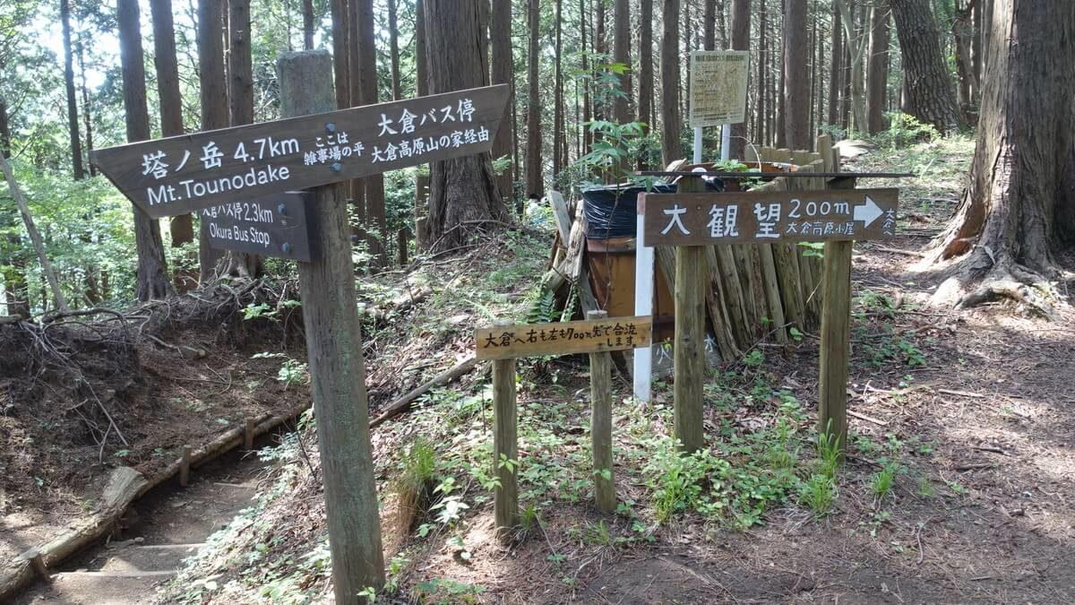 塔ノ岳 登山開始
