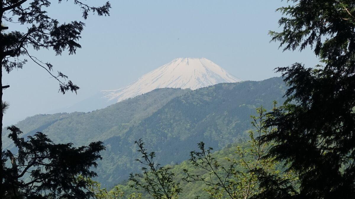 塔ノ岳からみる富士山