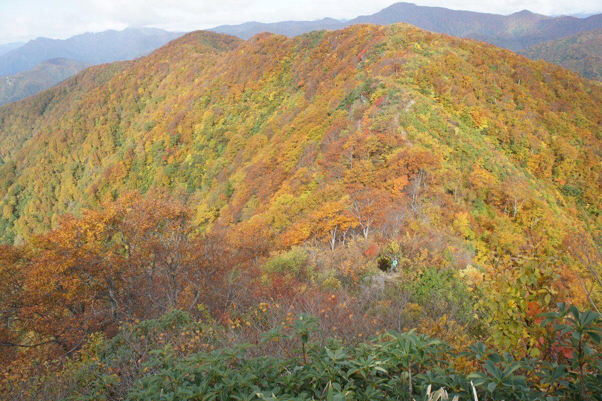 越後駒ケ岳