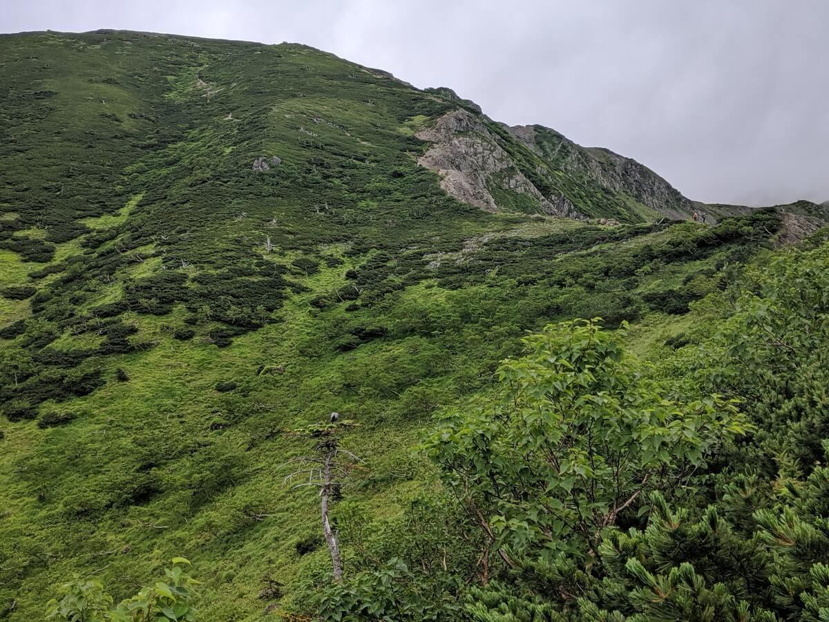 上河内岳の登り