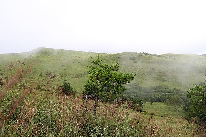 霧ヶ峰の登山ルート 物見岩・八島湿原
