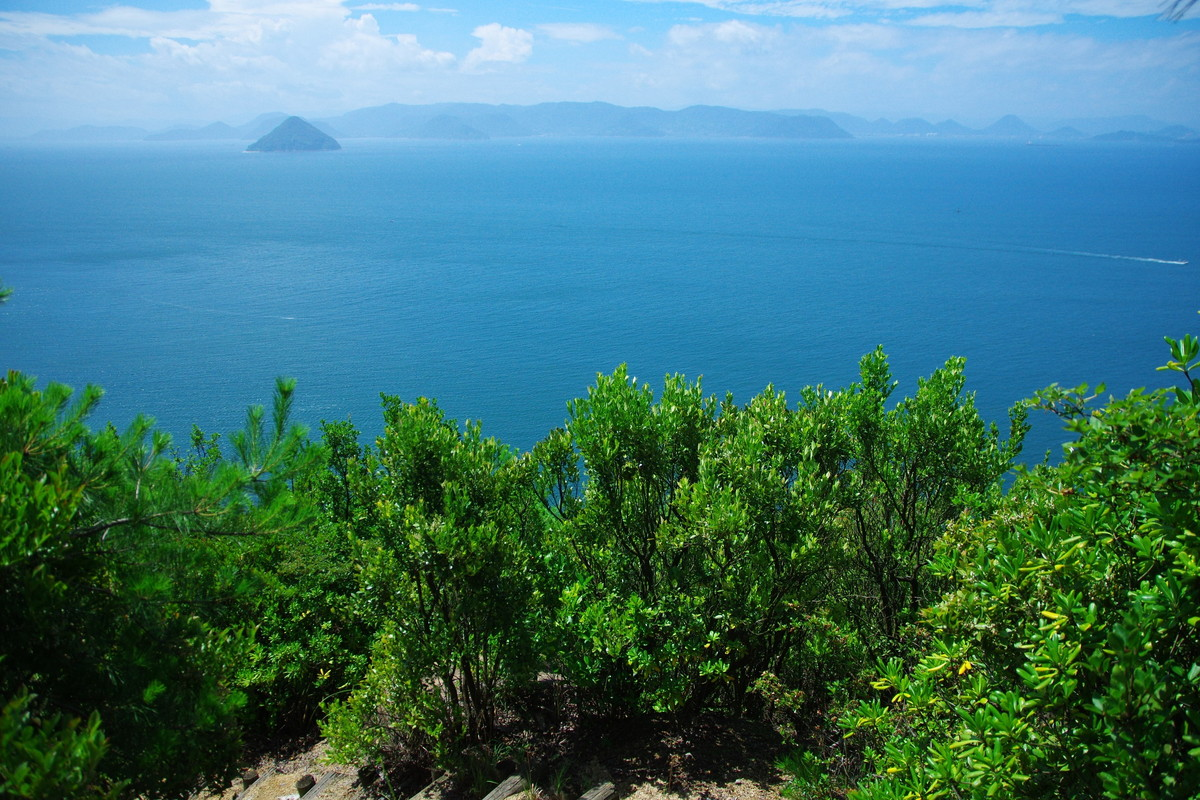 王子が岳から望む海の景色
