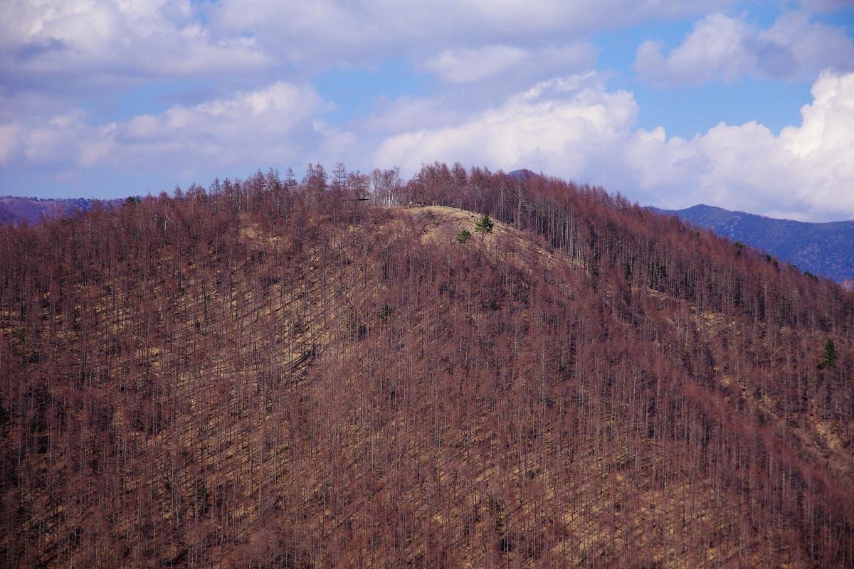 焼山峠から登る小楢山