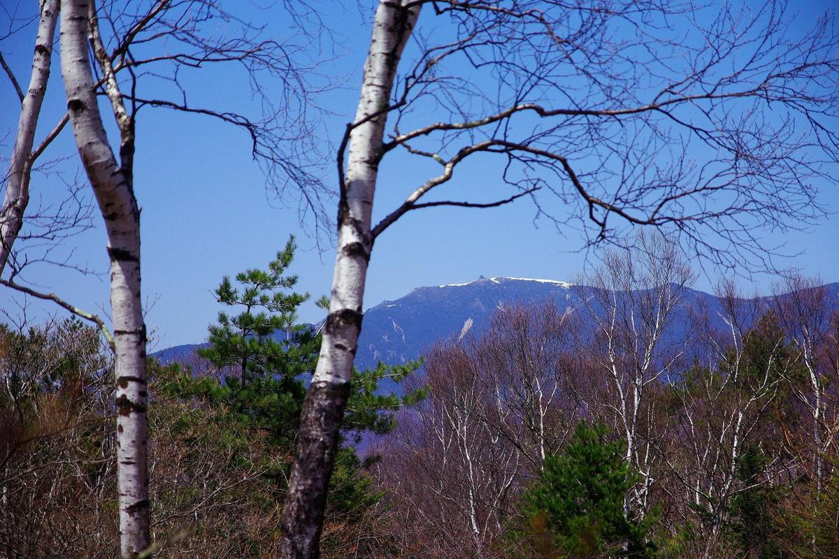 小楢山の山頂