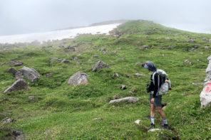 登山におすすめの個性派ソックス