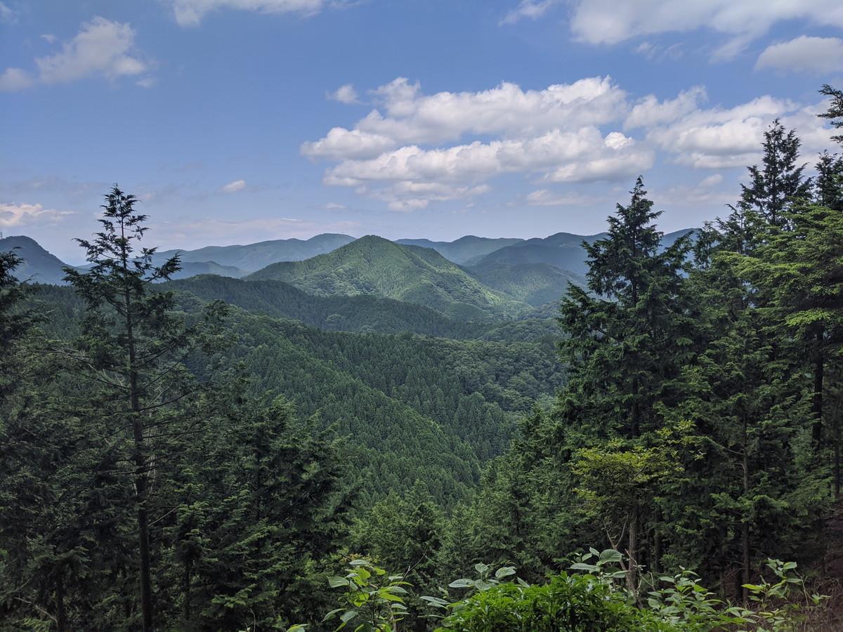 愉快な仲間と行く 奥武蔵 伊豆ヶ岳・温泉・秩父の山旅