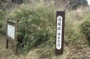 江戸時代の重要な幹線ルート「湯坂路」