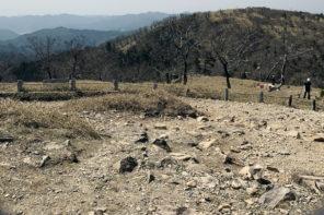 TALEXレンズで登山を楽しむ・軽く心地よいサングラス『OZNIS FLAT09』
