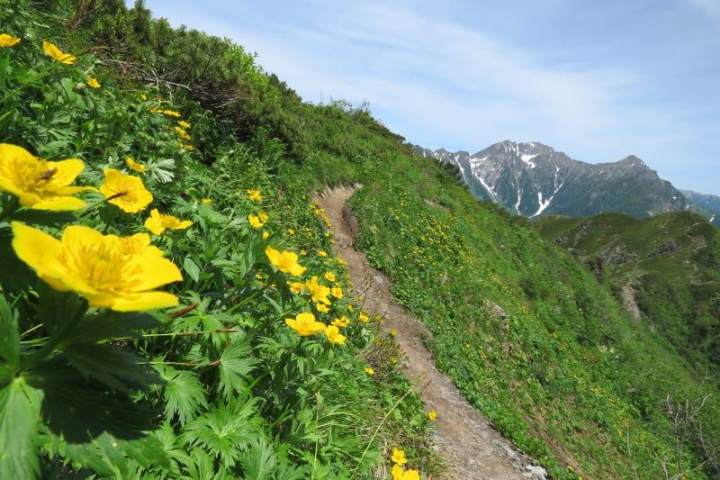 霞沢岳への登山道