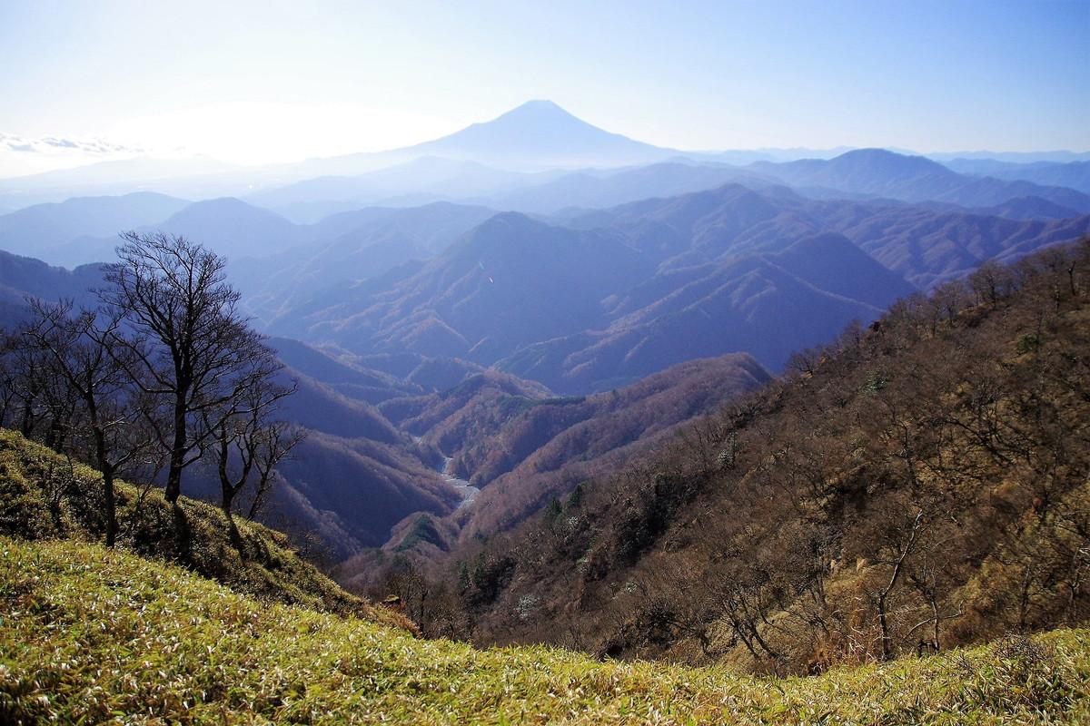 檜洞丸 富士山