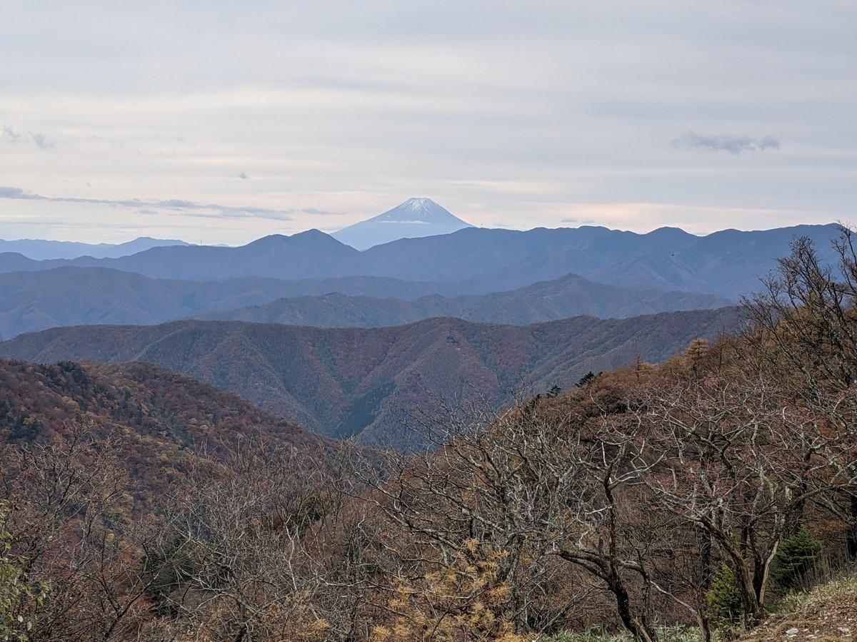 鴨沢から雲取山