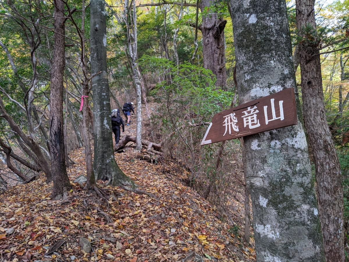 飛龍山方面に行く道