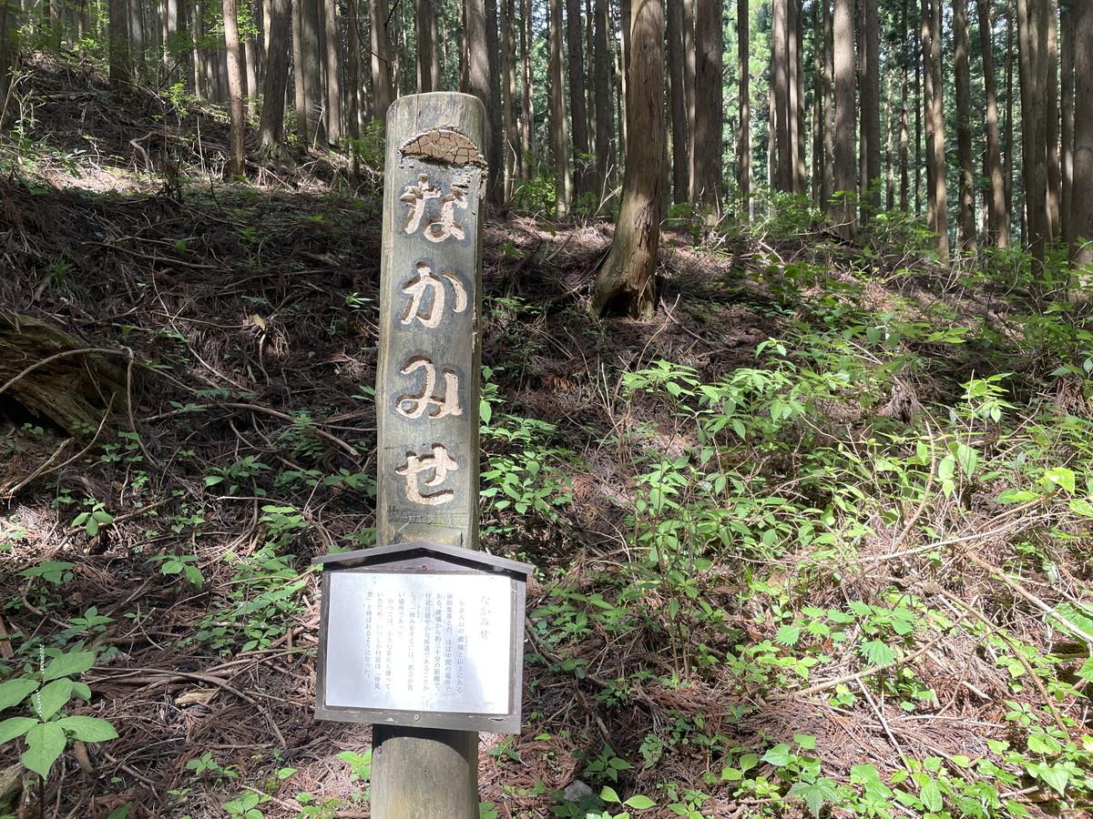 なかみせ 関東近郊おすすめトレイルランニングコース
