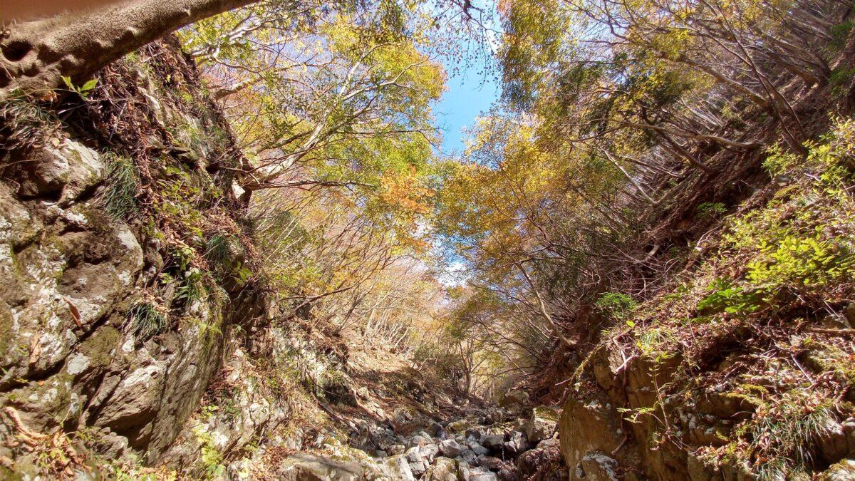 沢登りの魅力 色づく谷間