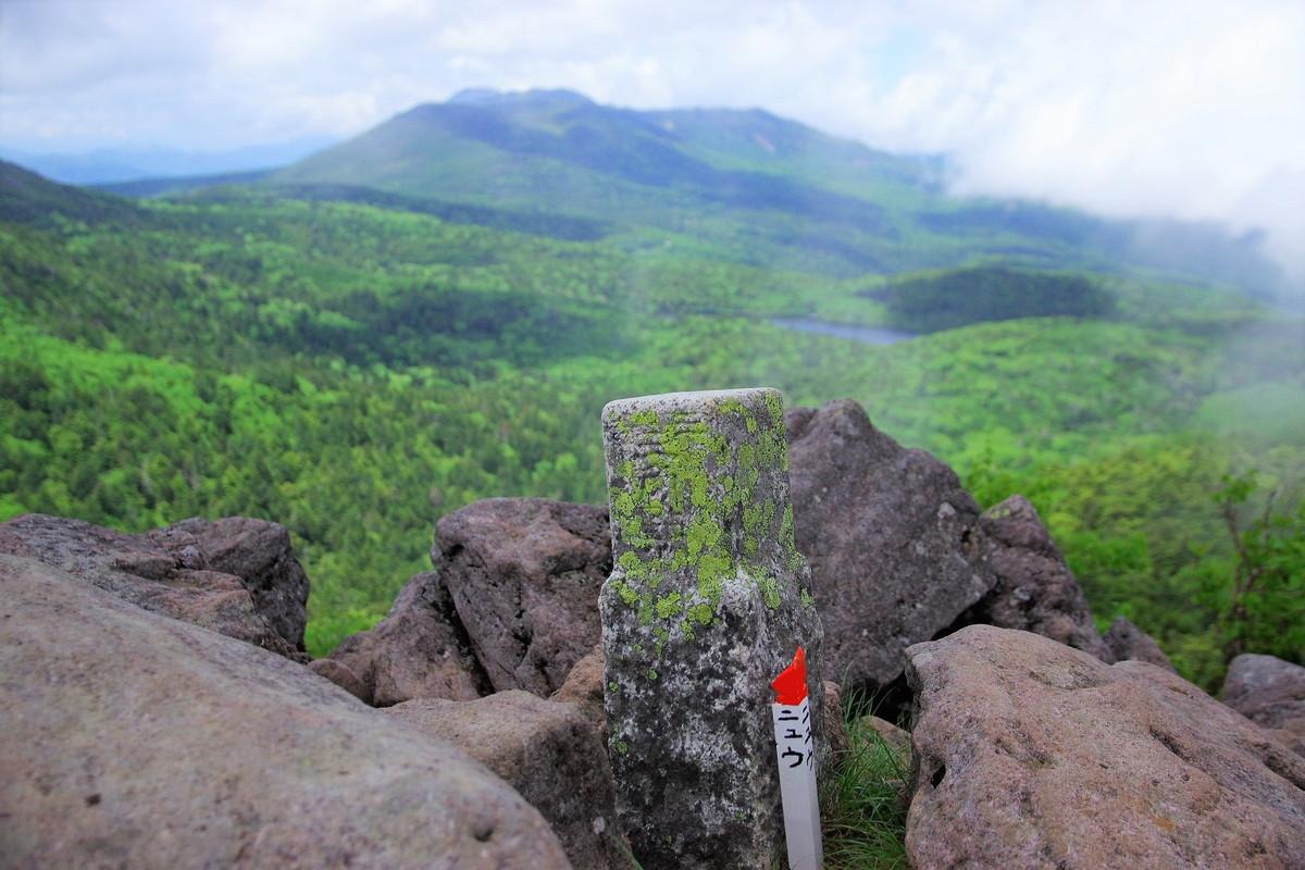 テーマで歩く山の旅 #16 梅雨の晴れ間に北八ヶ岳の樹林と水辺を狙う