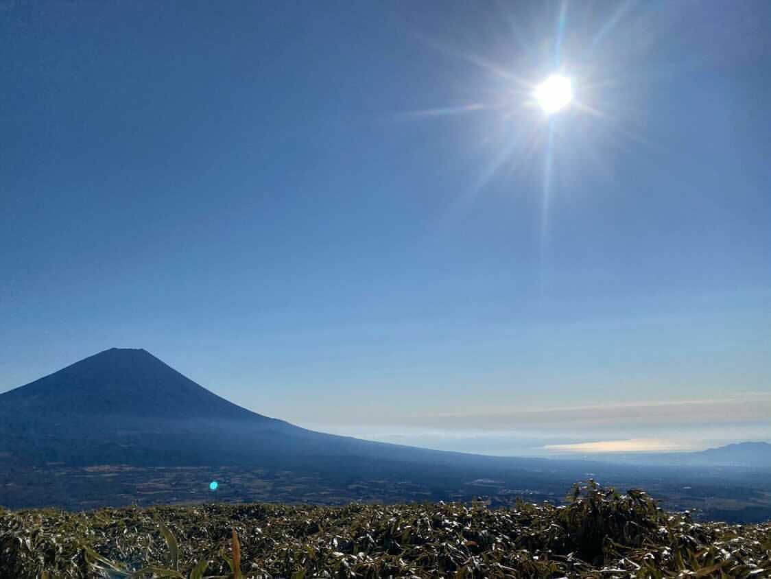 山梨 竜ヶ岳の登山コースをレベル別紹介-難易度・累積標高・距離