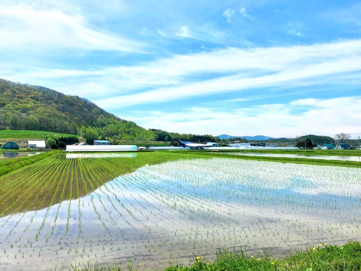 北海道 当麻町