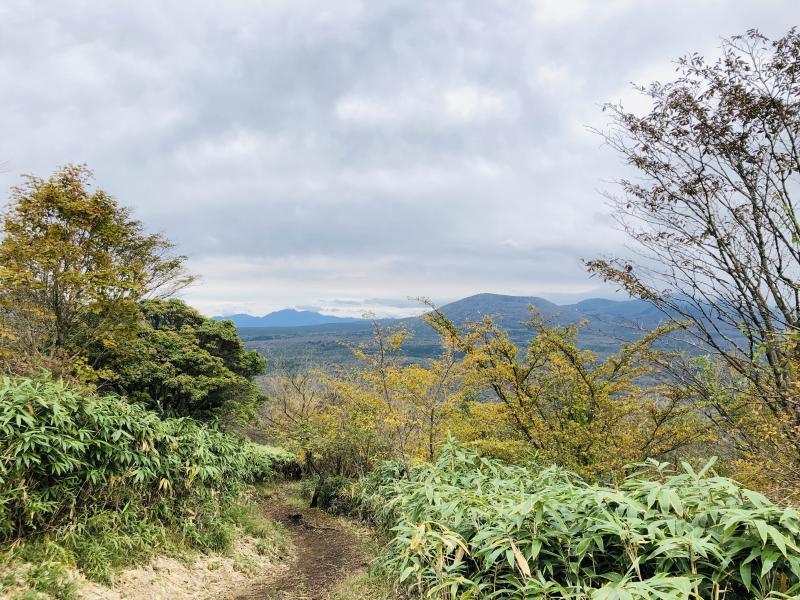 初心者にも安心の整備された登山道