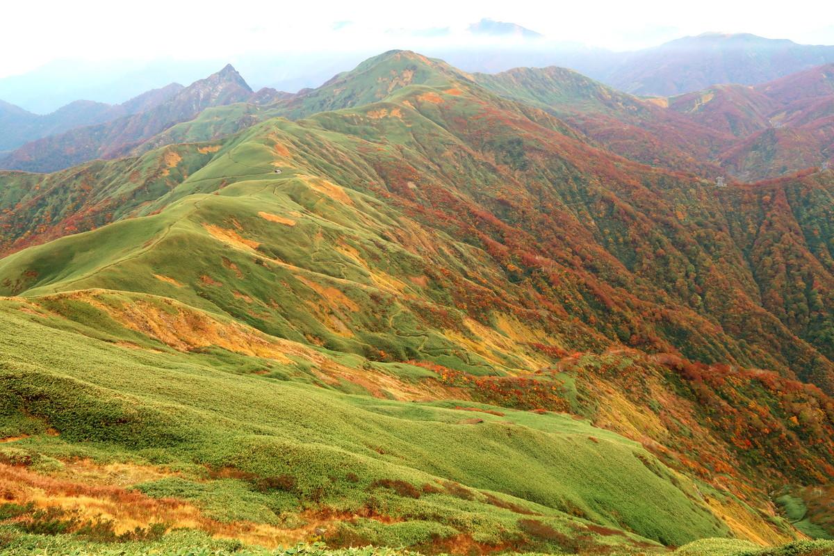 武能岳から 七ツ小屋山、大源太山を臨む