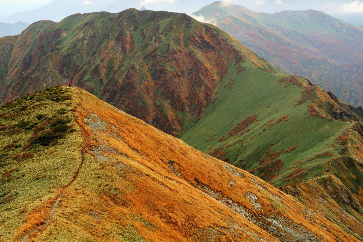 谷川岳の絶景紅葉3選!混雑状況とおすすめアクセス方法