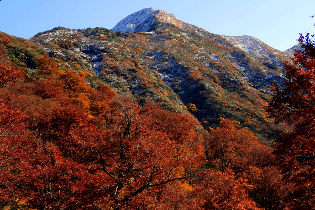 谷川連峰の絶景紅葉その3『大源太山』