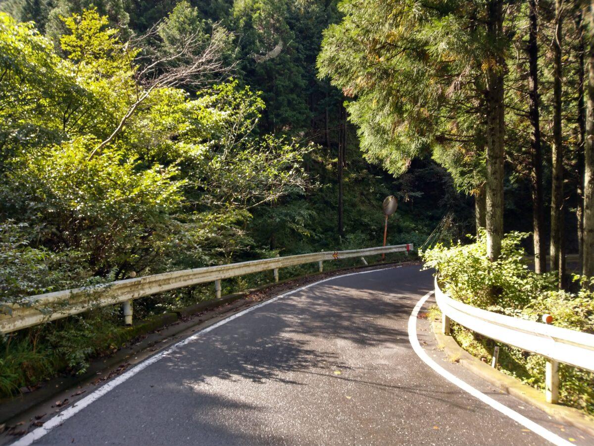 丹沢 三ノ塔 県道70号線