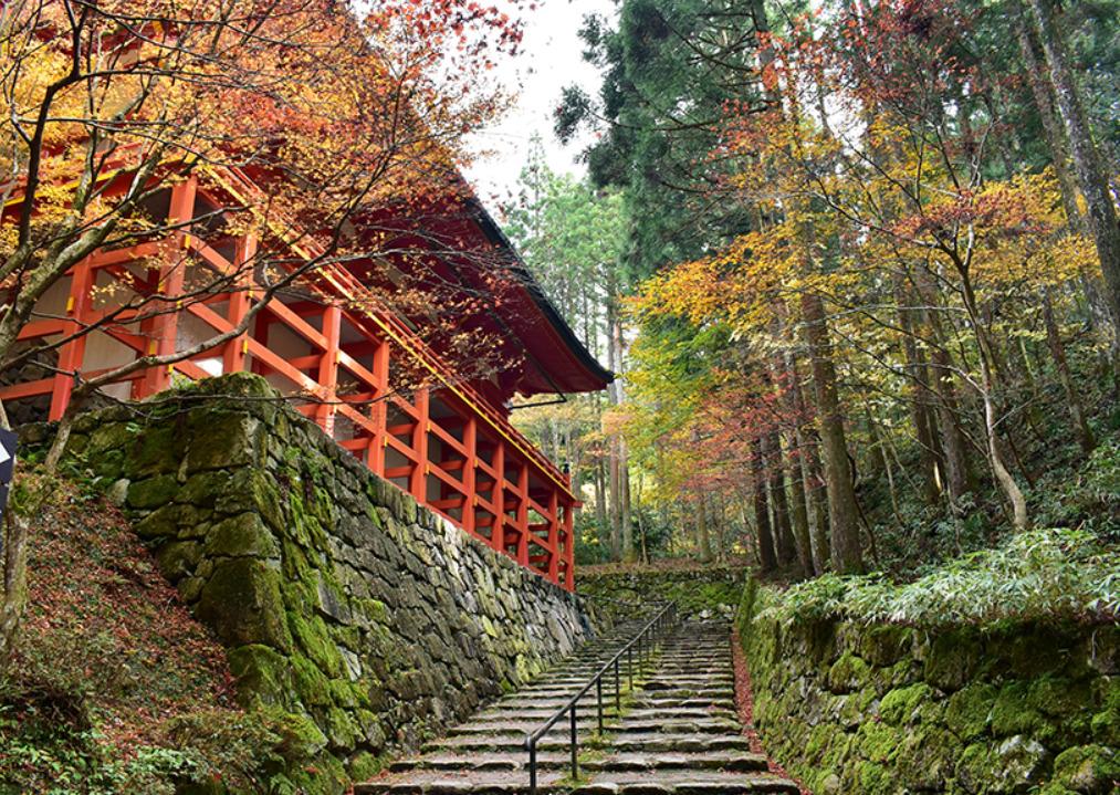 紅葉登山 比叡山