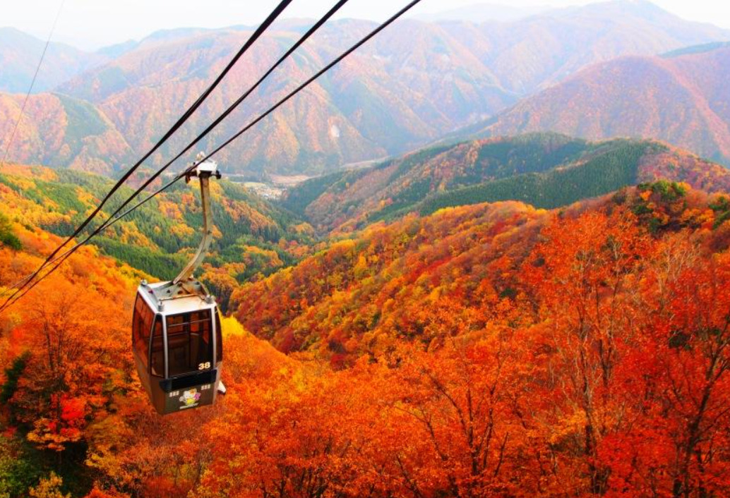 長く紅葉が楽しめる富士見台周辺