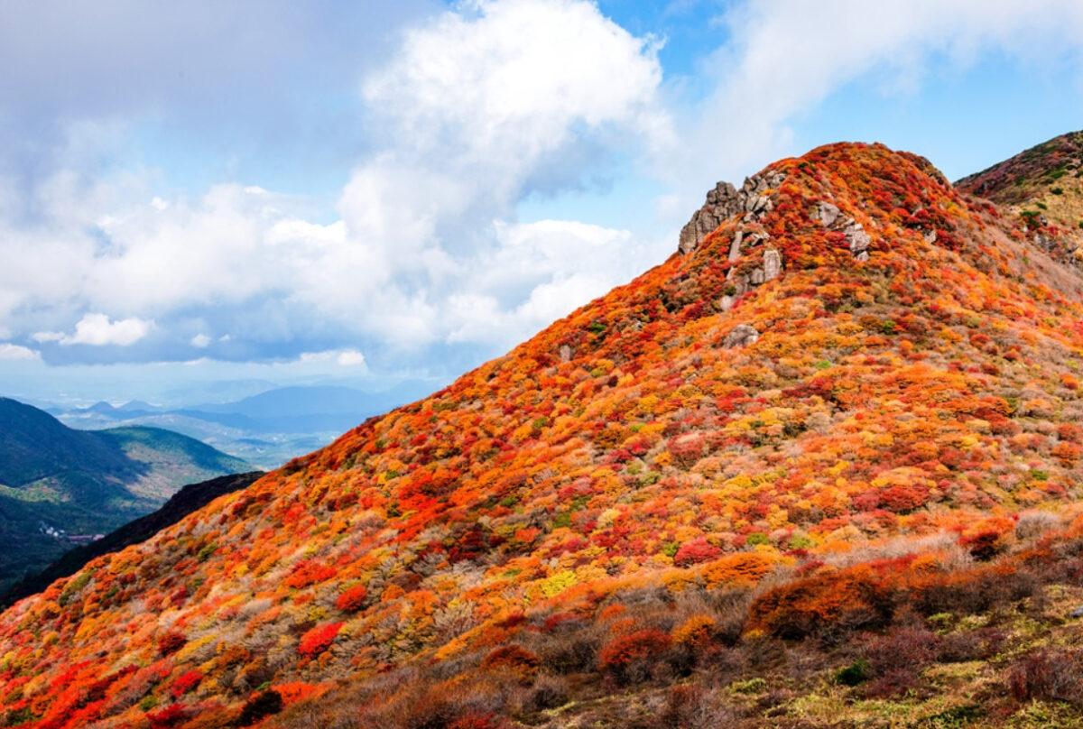 中国・四国・九州エリアの紅葉登山