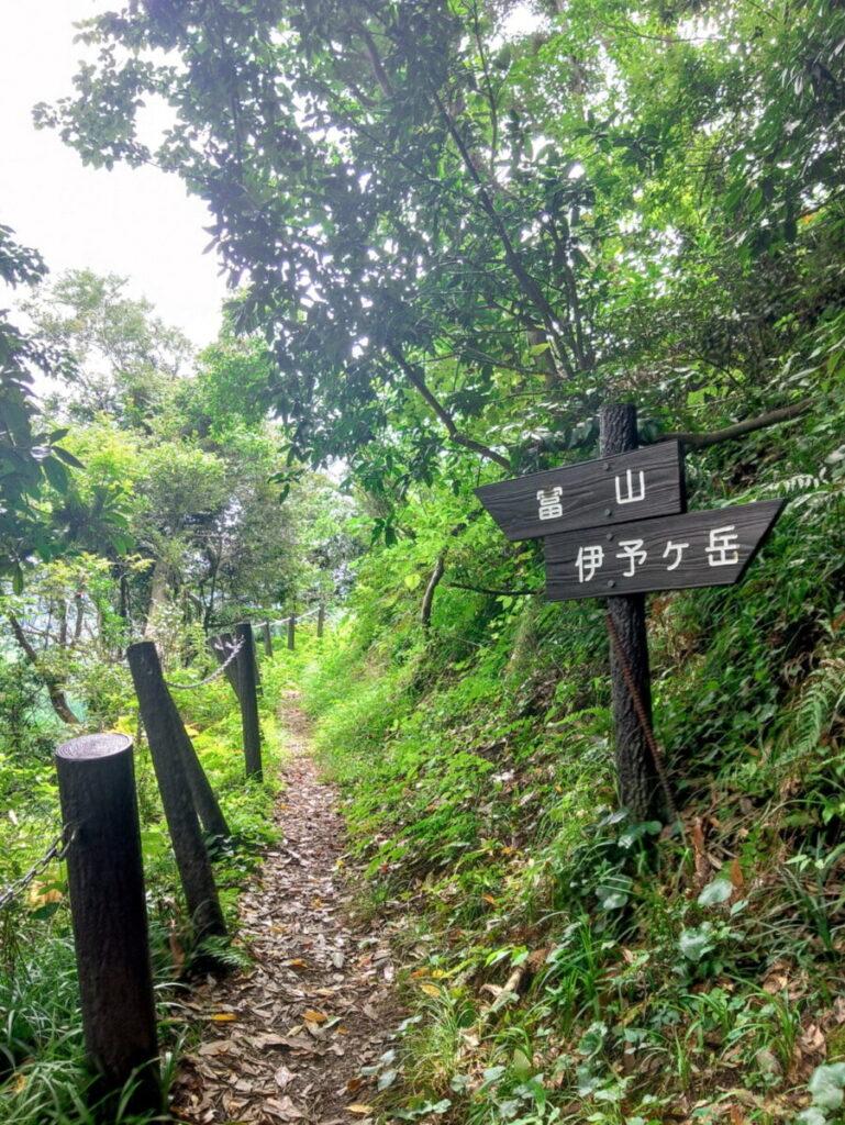 冨山・伊予ヶ岳の分岐